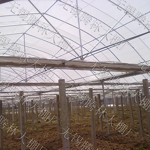 武汉温室大棚规格