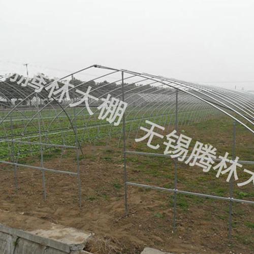 武汉建一亩草莓大棚产量