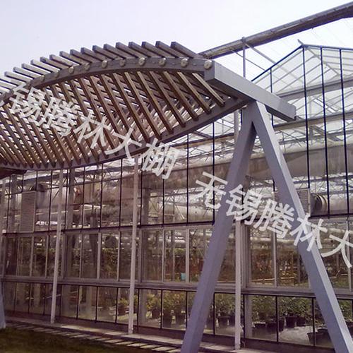 武汉文洛式玻璃温室