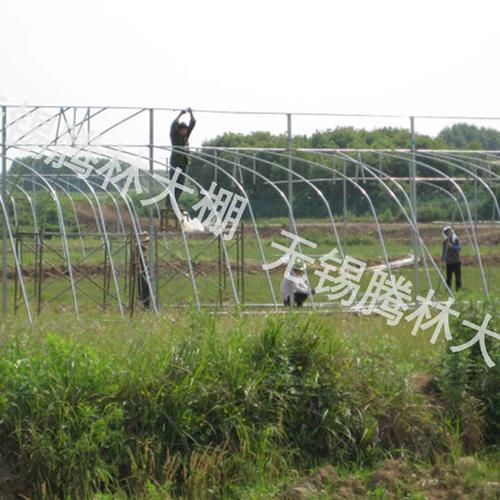 武汉养殖温室大棚