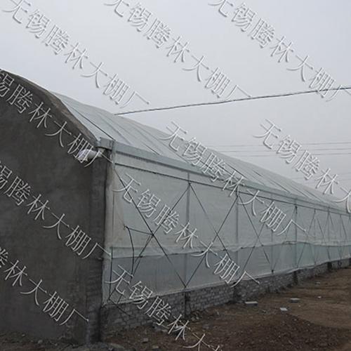 武汉养殖大棚成本
