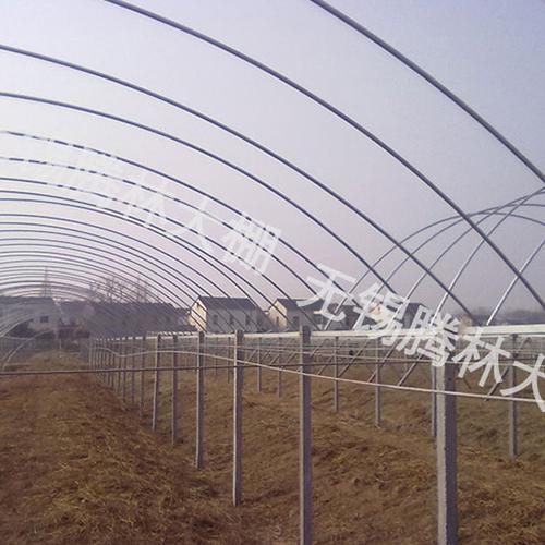 武汉葡萄园大棚的造作