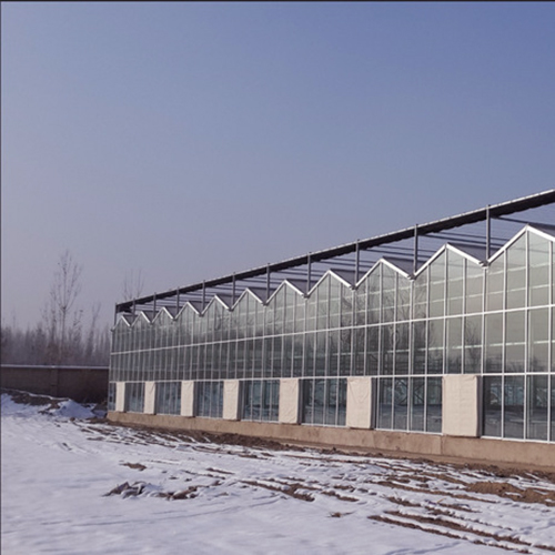 玻璃温室大棚造价
