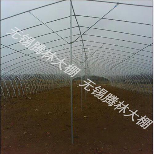 泰州养殖大棚建设