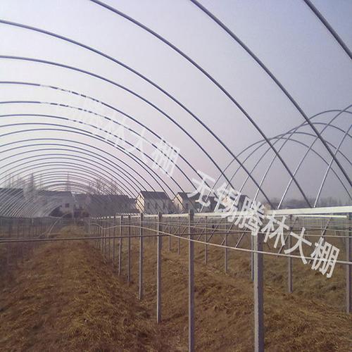 葡萄园大棚的造作