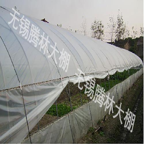 吴江蔬菜大棚价格