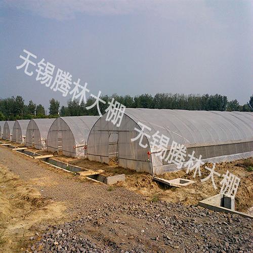 吴江现代农业大棚