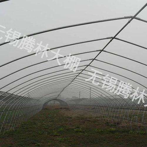 江苏GP825型单体大棚