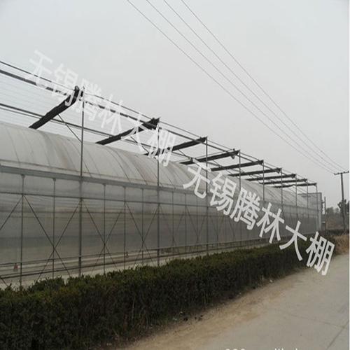 防虫网大棚