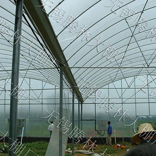 如何搭建温室大棚